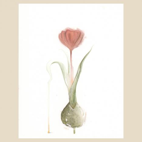 """Floral Study 12"""