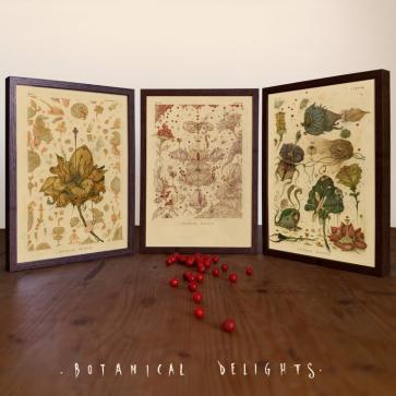 """""""Botanical Delights"""""""