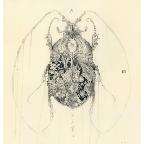 Metamorphosis  *Original artwork*