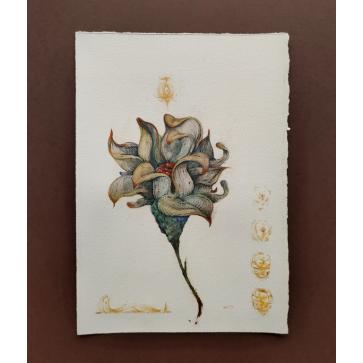 """Floral Study 10"""